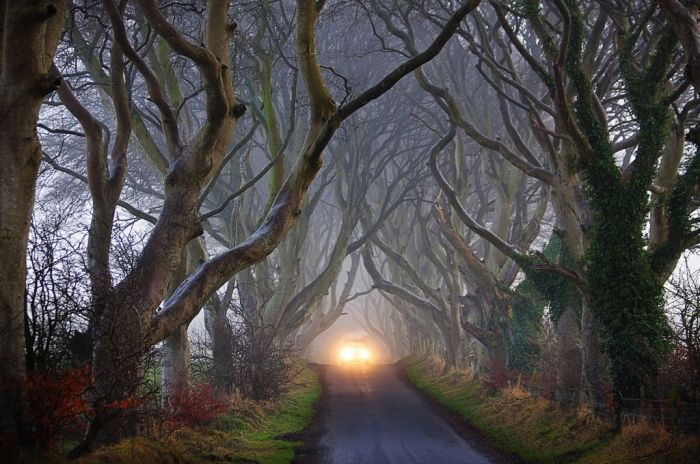 Beautiful Road in Ireland