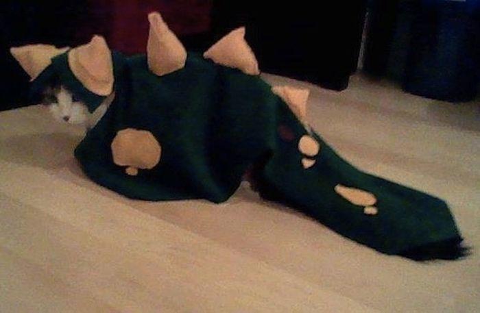 Animals Dressed Up As Dinos