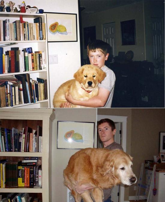 Man's Best Friend, part 2