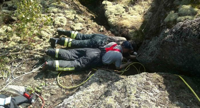 Dogs Rescued After Being Trapped