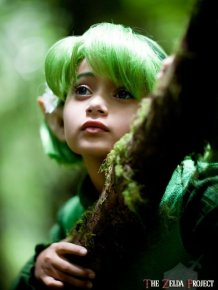 Awesome Zelda Cosplay