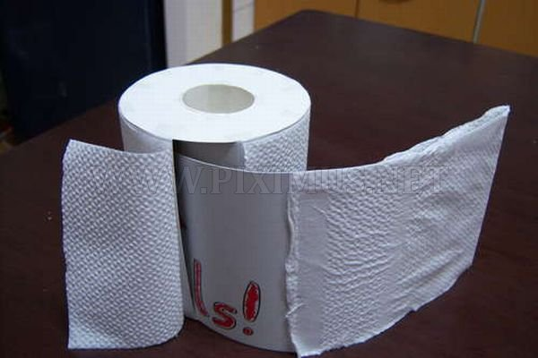 Toilet Paper Roll for the Fools Day