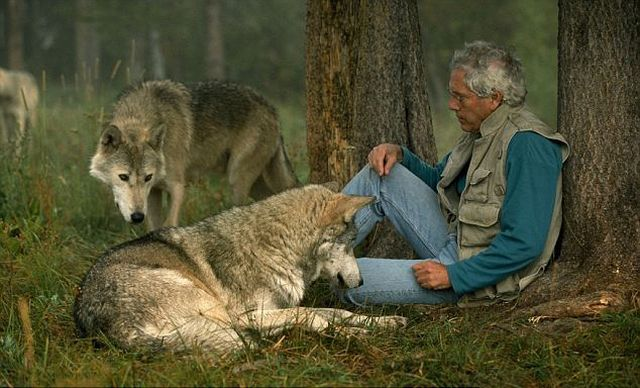 Living Among Wolves