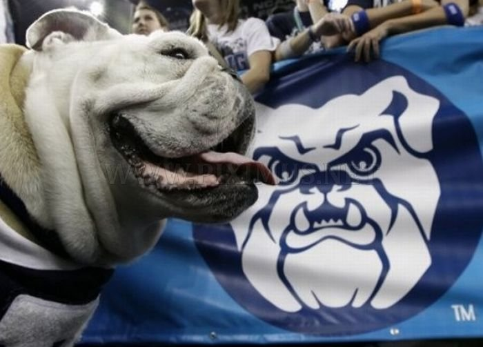 Charming University Mascot