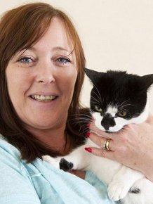 Burglar Cat Steals Things from the Neighbors