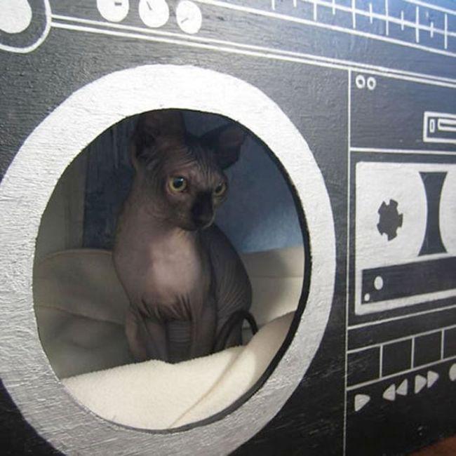 Creative Cat Houses