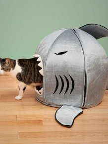 Creative Cat Houses