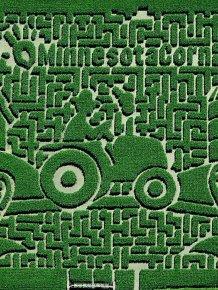 Amazing Corn Crop Maze Art