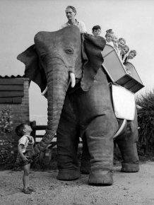 Robot Elephant, 1950