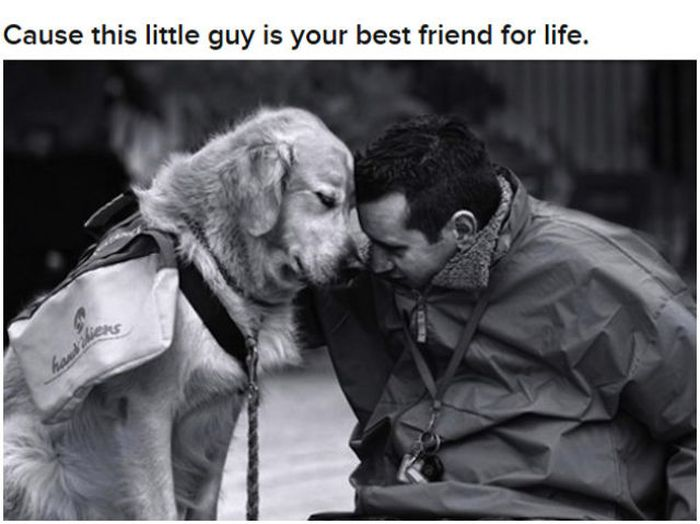 Why Dog Is Man's Best Friend