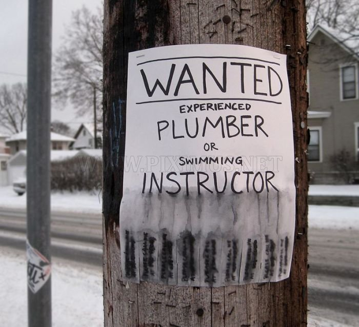 Funny Signs , part 2