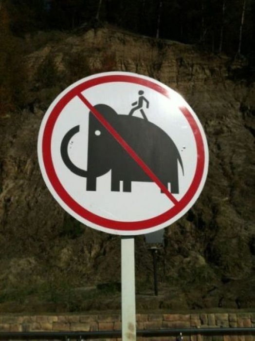WTF Signs, part 21