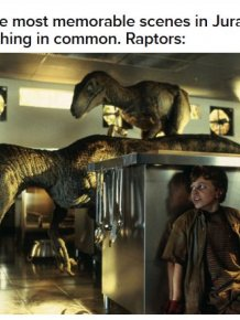 "The ""Jurassic Park"" Raptors Explained"