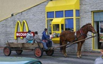 The Most Unusual Drive-Thru Customers