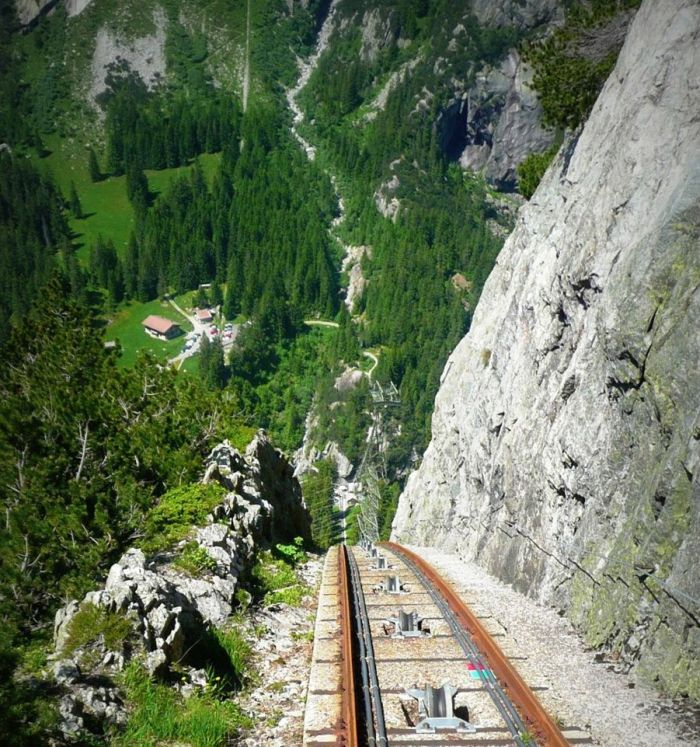 Scary Animals That Are Real Gelmer Funicular &...
