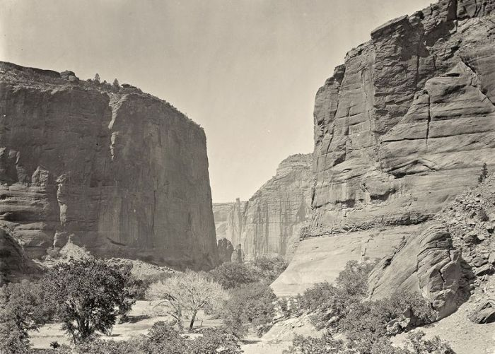 Vintage Photos of Wild West