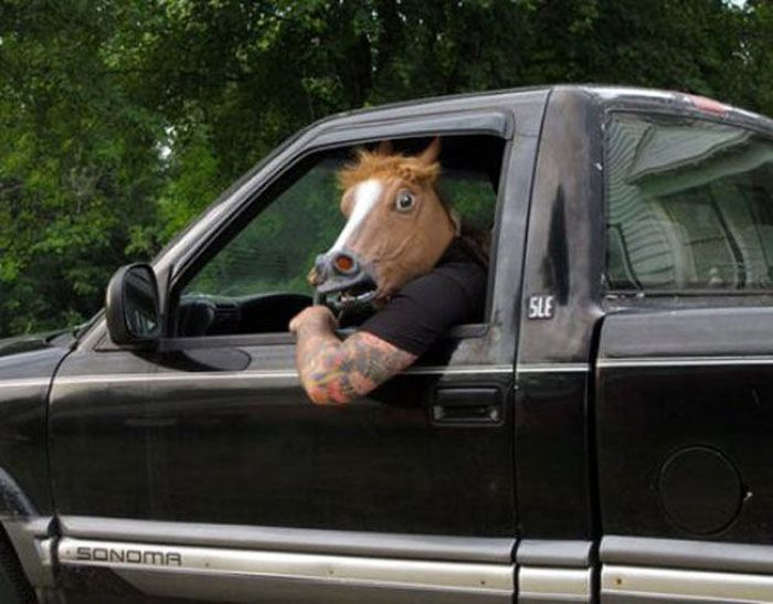 Just Horsing Around
