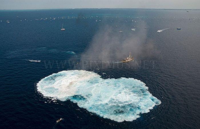 Amazing Artificial Reefs