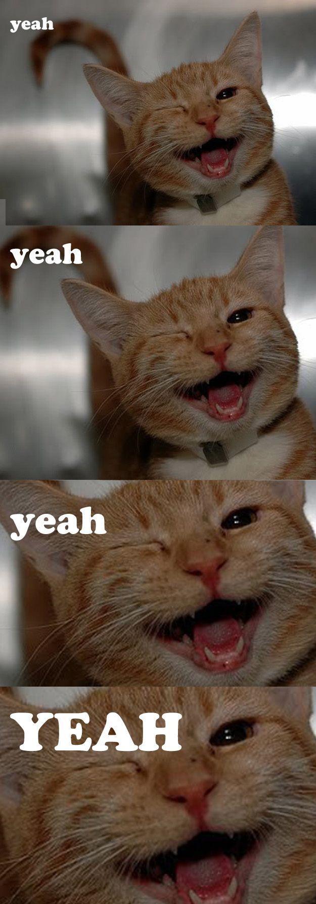 """Ludacris' """"What's Your Fantasy"""""""