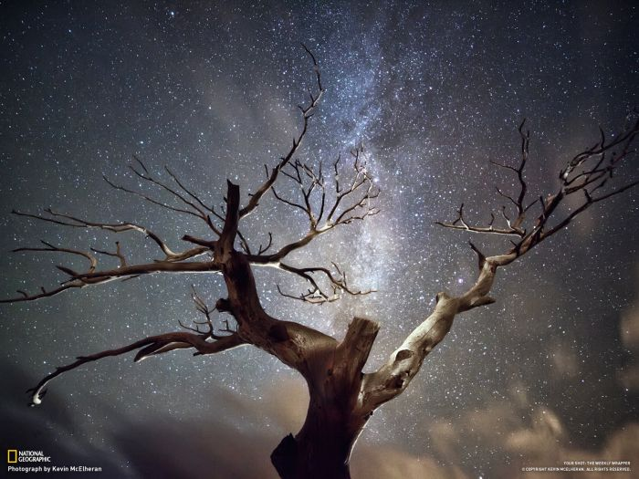 Beautiful Pictures by National Geographic