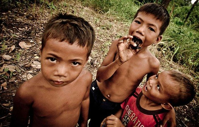 Children in Cambodia Eat Spiders