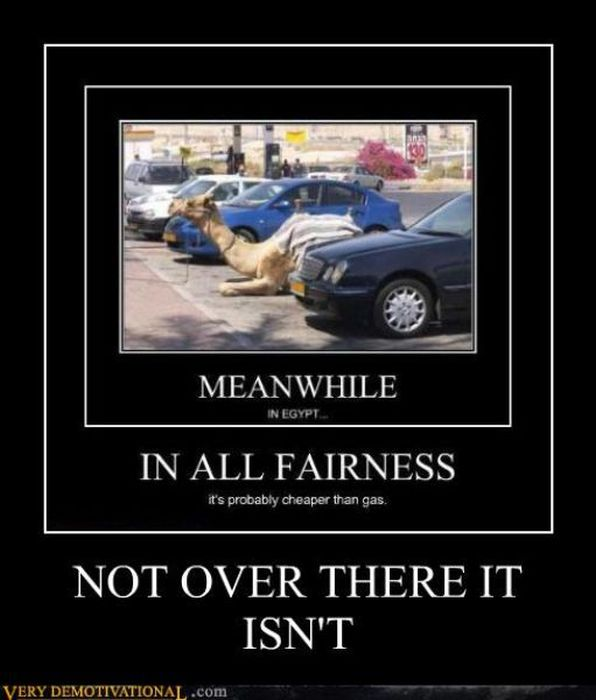 Funny Demotivational Posters, part 138