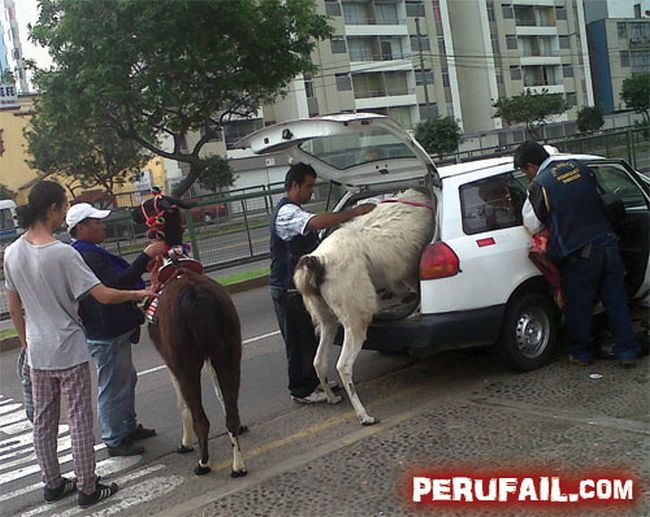 Only in Peru, part 2