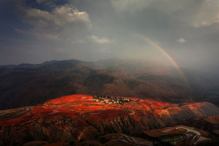 National Geographic Photo Contest 2012, part 2