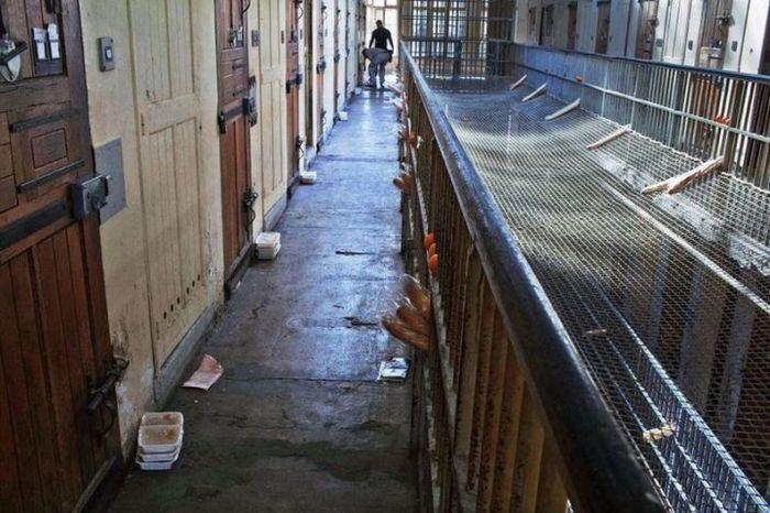 Baumettes Prison