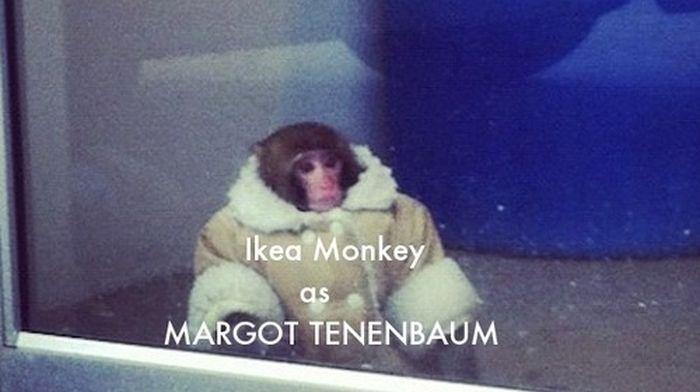 Ikea Monkey Meme Continues