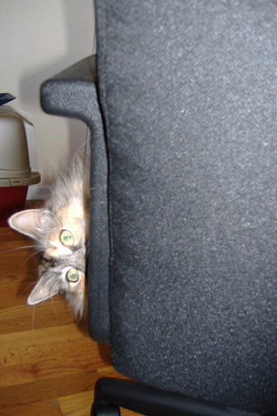 I See You…