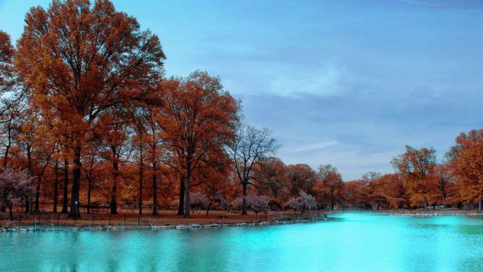 Amazing Landscapes