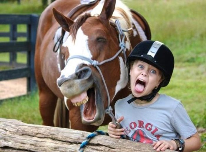 WTF and Funny Animal Pics of the Year