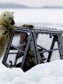 Spectacular Polar Bear Attack