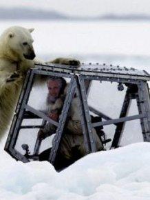 Spectacular Polar Bear Attack