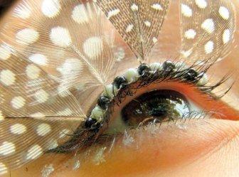 Eyelash Decoration