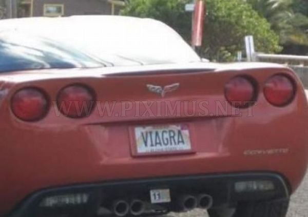 Hilarious License Plates