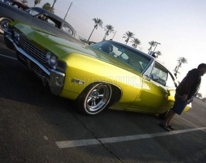 American Muscles, part 2