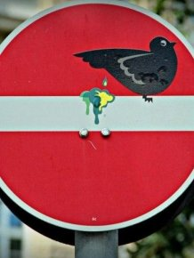 Unusual signs
