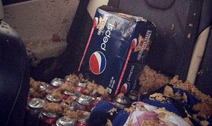 Never Leave Cans of Soda in Your Car...