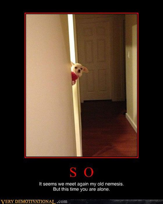 Funny Demotivational Posters, part 158