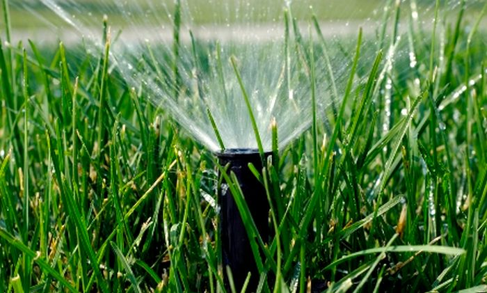 What Happens if You Use Lawn Sprinkler in Winter
