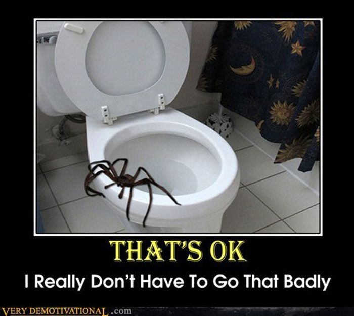 Funny Demotivational Posters, part 159