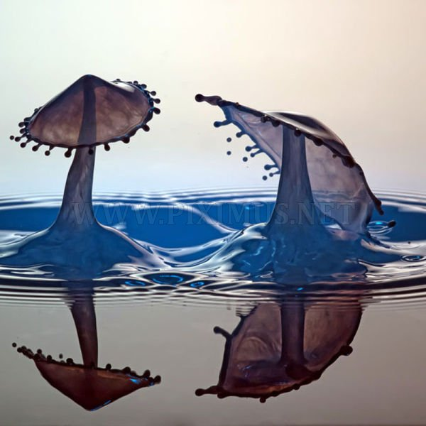 High-Speed Photography of Water Drops