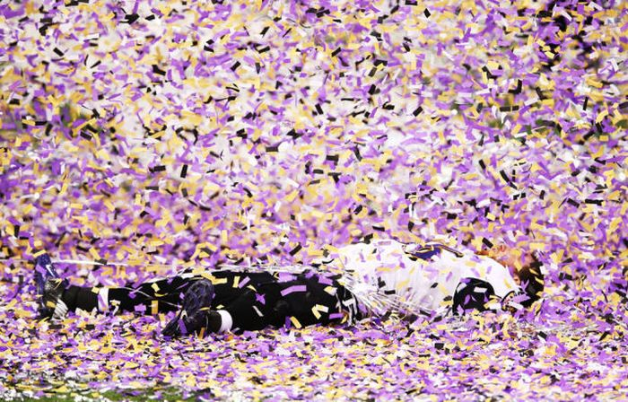 Photos Of The Baltimore Ravens Winning The Super Bowl