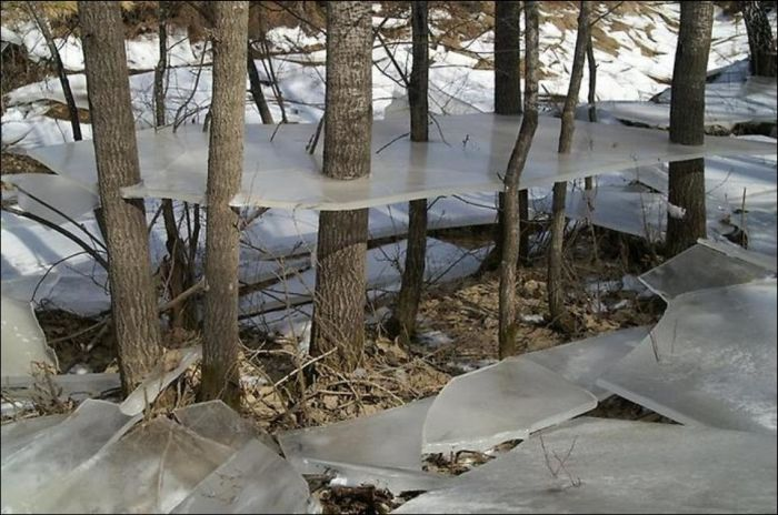 Aftermath of a Winter Flood