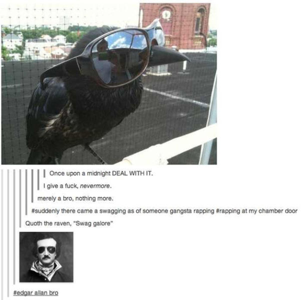 Great Things That Happened On Tumblr