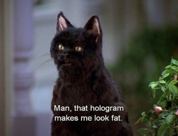 Things Said by Salem Saberhagen