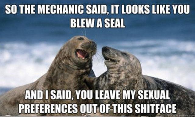 Funny Captions, part 2