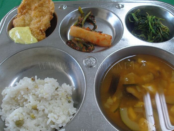School Lunches in Different Countries